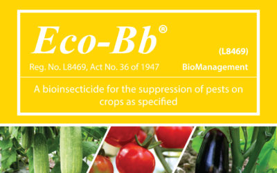 6 reasons WHY Eco-Bb® should be included in an IPM spray program