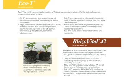Inteligro crop guideline, Wine Grapes 2019