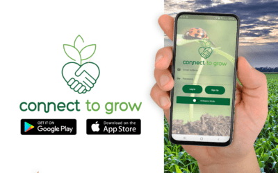 Madumbi Support App – CONNECT TO GROW
