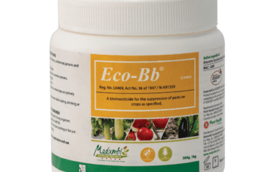Eco-Bb label extension